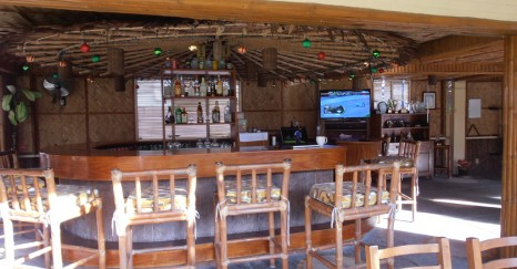 Tropical Bar with HD TV